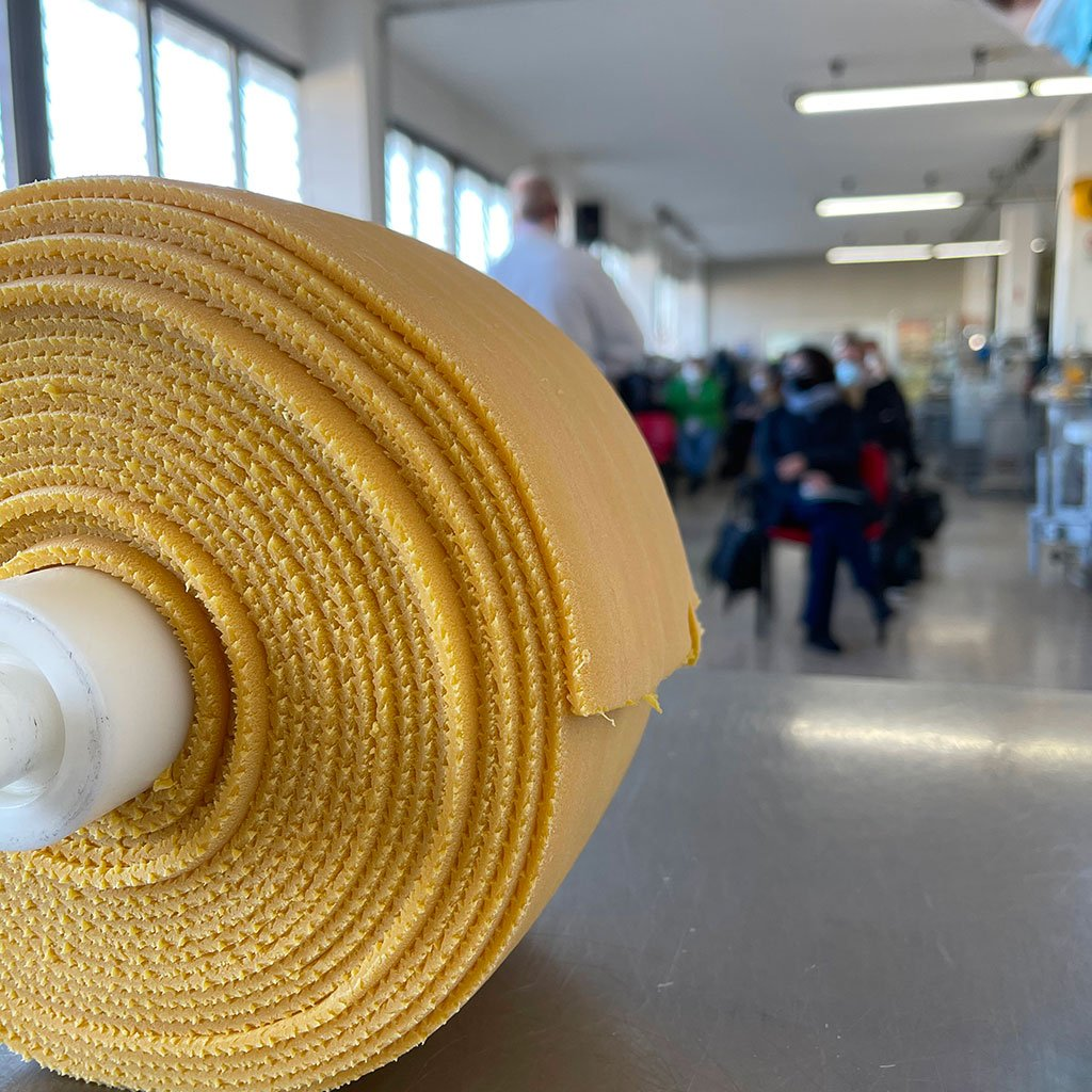 Agricultural Institute dry pasta production project