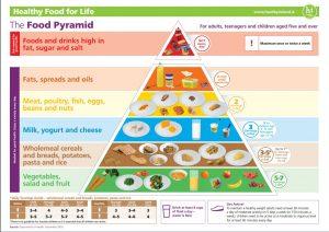 pasta nutritional pyramid